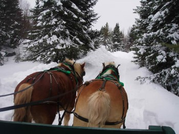 big-event-sleigh-ride-001